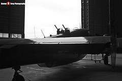 NL83L 37535 Rose's Raiders - 15-1501 - Private - Lockheed Vega PV-2D Harpoon 15 - Tillamook Air Museum - Tillamook, Oregon - 131025 - Steven Gray - IMG_7973