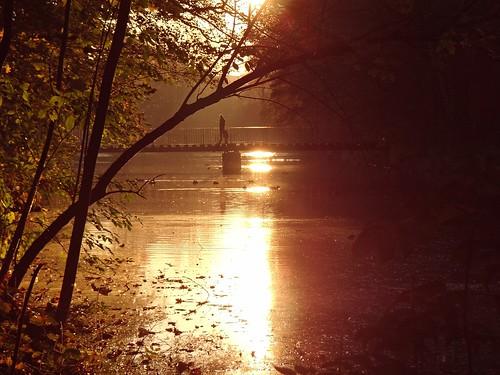 park bridge autumn trees sunset people fall nature water reflections river walking landscape gold golden pond view poland polska lodz łódź lodzkie parkjulianowski łódzkie parkimamickiewiczawłodzi