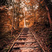 Forgotten Path by Anthonypresley1