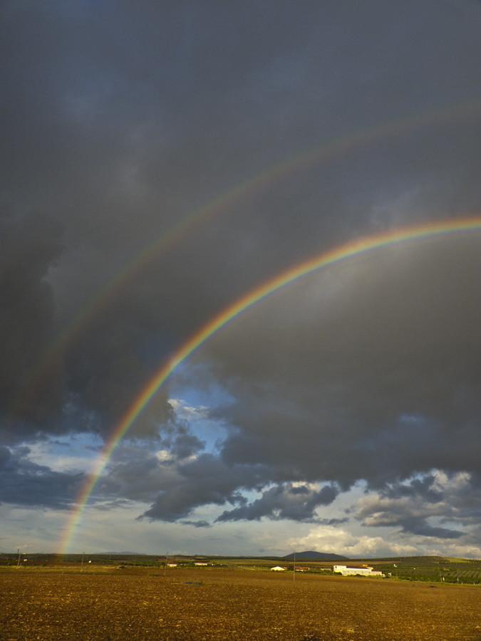 Y la lluvia sacó los colores al cielo