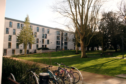 Whitelands Halls