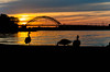Sunset Geese 2