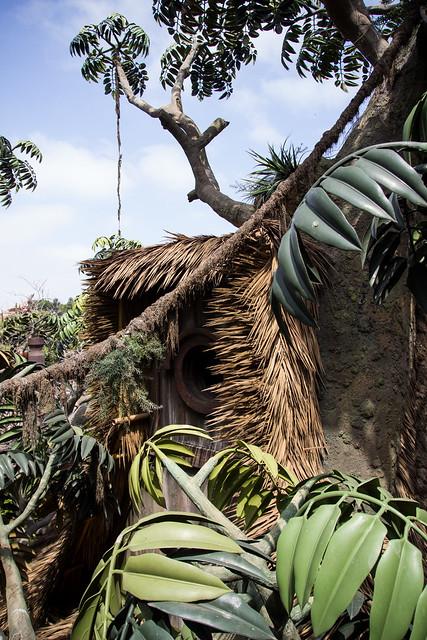 treehouse | Your Daily Tree: Tarzan's Treehouse ...