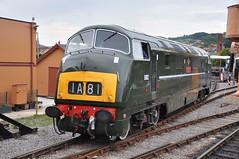 Class 42