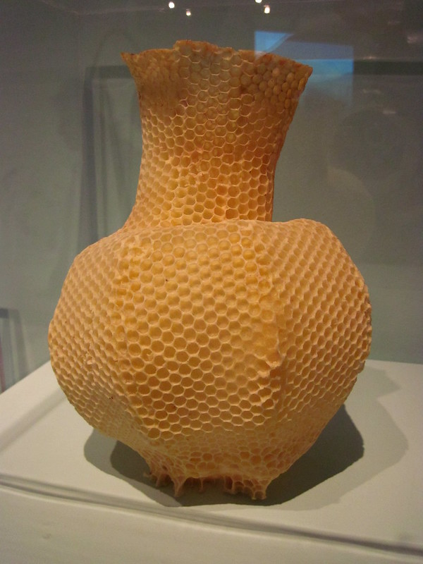 The Honeycomb Vase, a vase created by bees so it's covered in hexagonal cells of wax