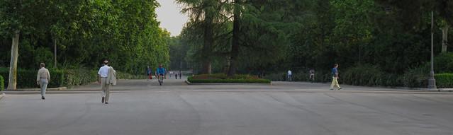parque retiro, madrid (2016)