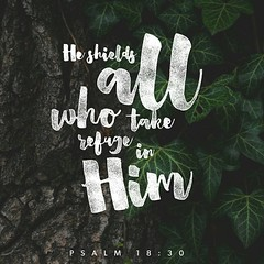 As for God, his way is perfect: The Lord 's word is flawless; he shields all who take refuge in him. Psalm 18:30 NIV