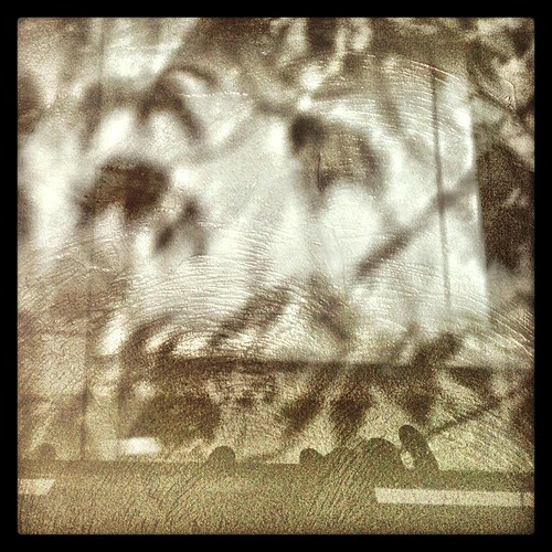 wall by Nature Morte
