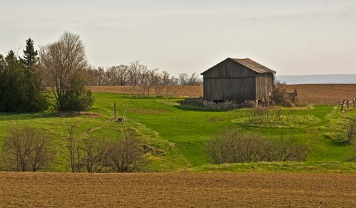 ontario canada barn farm clearviewtownship