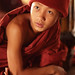 Myanmar, monks and novices by Dietmar Temps