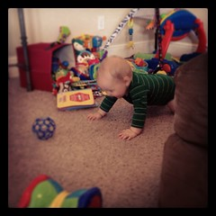 Someone learned how to crawl. #nowweareintrouble