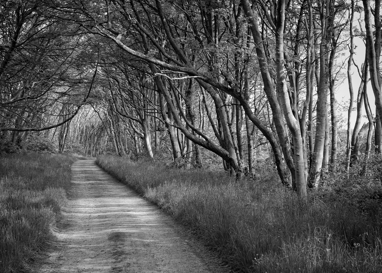 The Avenue, Achamore, Gigha
