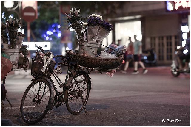 SHF_7028_bicycle