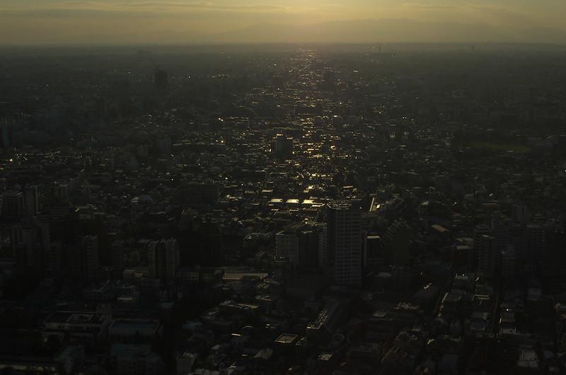 新宿フォトウォーク 2014年11月19日