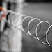 Spiral Fence Friday by Peter Jaspers