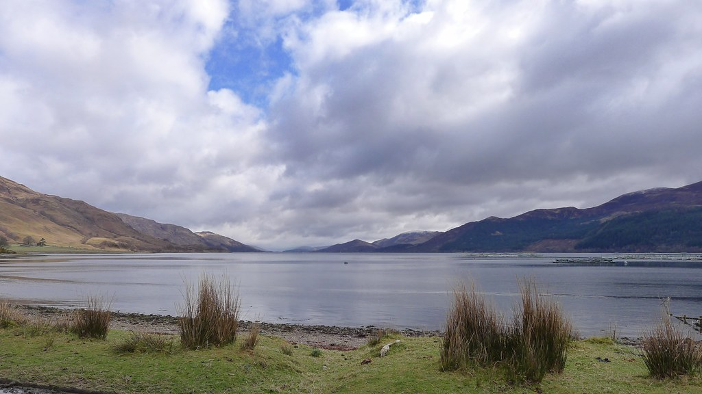 Loch Linnhe from Ardgour