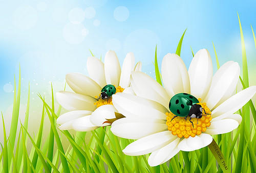 Green Ladybugs and Flowers