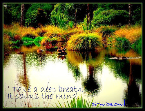 Take A Deep Breath.....