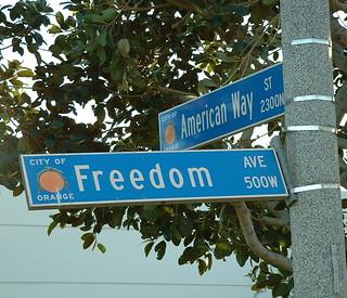 Losing Freedom
