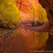 Choprock Color by David Swindler (ActionPhotoTours.com)