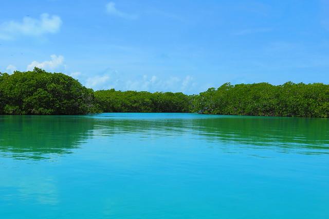 Reserva de la Biosfera de Sian Ka'an. Península de Yucatán. México.