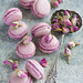 Rose macarons (375) by The Little Squirrel