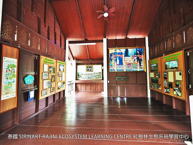 泰國 SIRINART RAJINI ECOSYSTEM LEARNING CENTRE 紅樹林生態系統學習中心 30
