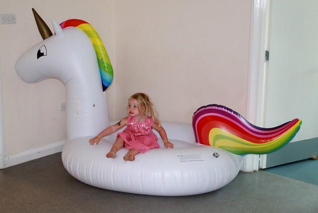 D party the giant unicorn