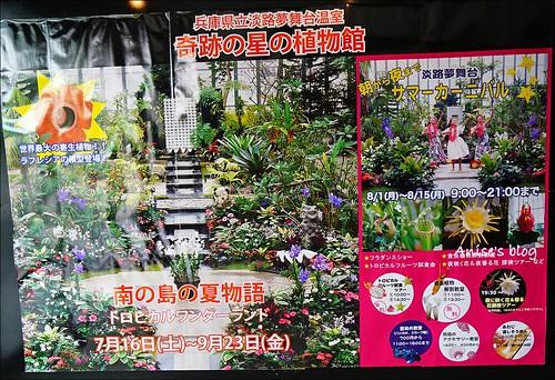 淡路夢舞台溫室003