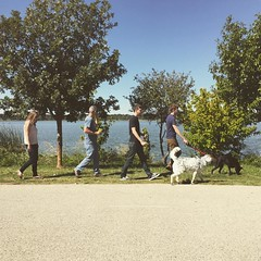 Took the Sanders crew and the girls for a walk at #WhiteRockLake. Such a beautiful day!!