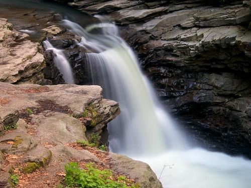trees usa rock waterfall pennsylvania smooth northamerica scranton nayaugpark lackawannacounty nayaugfalls olympusm1250mmf3563