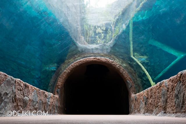 River Safari - Giant River Otter tube