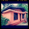 #grandma #house #pink #paint #renovated #beautiful #kandy #awesome #swag #family #instalikes #instagram #love #instadaily #picoftheday #bestie #likeforlikes #tagsforlikes #followback #pure #view #tweegram #facebook #kik #iger #instafollow #40likes #tflers