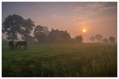Sunrise on a farm