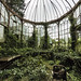 The green house by DMAX303