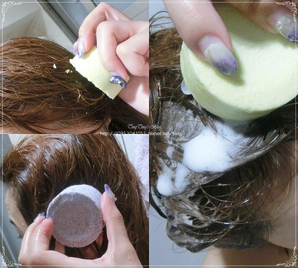 Fresh Line 洗髮餅 (8)