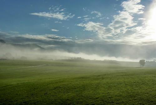 blue sky green field fog spring colorado silt