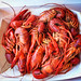 Crawdads for lunch! by meggle