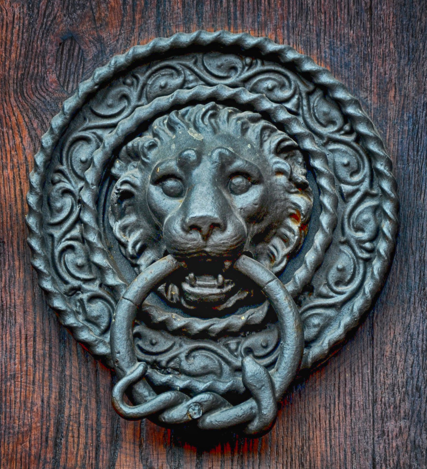 Lion head door knocker, Black Forest, Germany