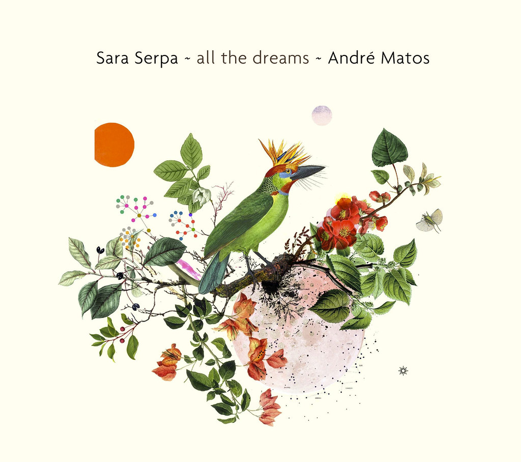 All the Dreams_Sara Serpa