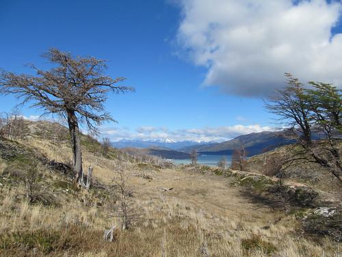 Torres del Paine: trek du W. Jour 5: retour à Paine Grande. The end !