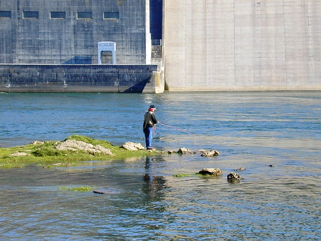 Fly-fishing beneath the Wolf Creek Dam on the Cumberland R ...