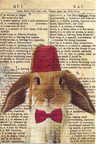 Lop Bunny