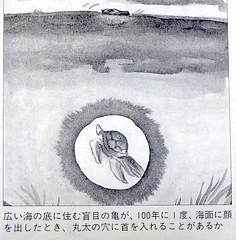 DSCF1101