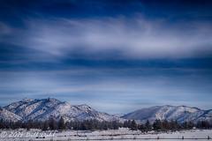 Terrebonne Landscape 9