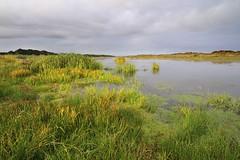 New River Area of Critical Environmental Concern, Oregon