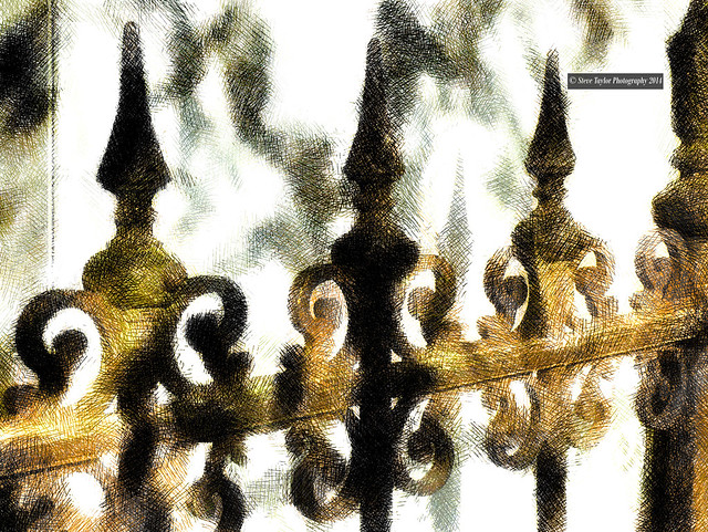 Steve Taylor (Photography) - The Dappled Railings