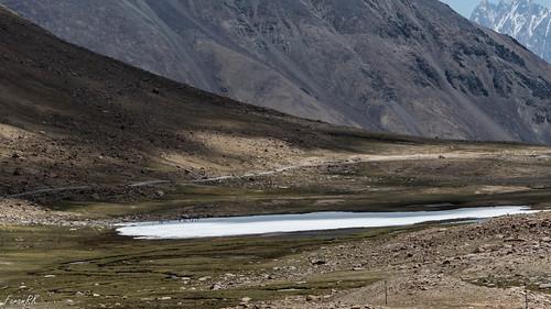 ice ladakh mountains pond tsoltak