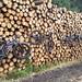 8 10 Log pile bike rack by Johnclimber