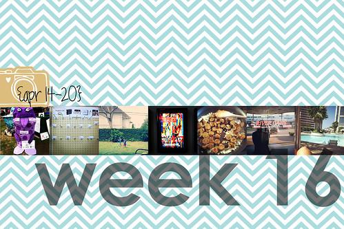 week 16 title